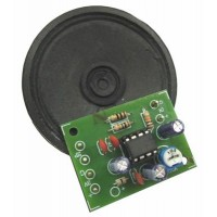 1 Watt Power Amp kit w Speaker image