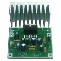 15 Watt Mono Power Amplifier Kit image