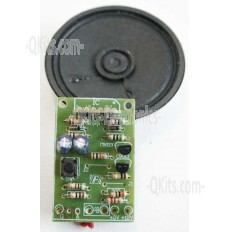 Witch Voice Kit image FK222