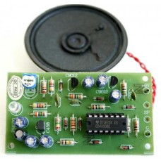 Intruder Alarm Kit with Delay Function image
