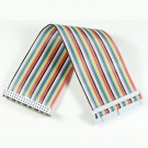 GPIO 40 Pin Ribbon Cable